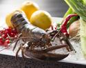 Atago course (A5) active omal shrimp
