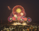 Fireworks display special dinner
