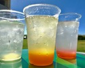 All-you-can-drink soft drinks (rental / bring-in)