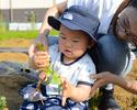 Bコース:収穫体験で有機野菜を楽しむ!シンプルコース(3時間制)