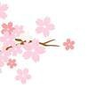 櫻花祭雙人組合餐