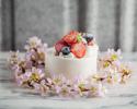 🎂 ANNIVERSARY CAKE|7品