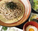 Cold Soba Noodles with Duck Dipping Sauce Set