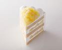 新エクストラスーパーメロンショートケーキ1ピース ¥3,800(税抜)
