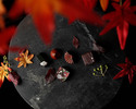 秋の収穫祭 ~Autumn Harvest~【第4弾:旬遊紀】
