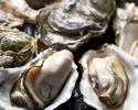Sanriku Coast Oysters
