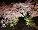 夜桜コース