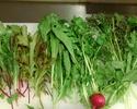 【テイクアウト】飯田農園サラダ野菜セット