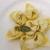 【TAKEOUT】リコッタチーズとほうれん草を詰めたトルテッローネ Tortellone stuffed Ricotta & Spinach