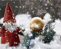 クリスマスコース A