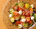 【テイクアウト】カラフルトマトとモッツァレラのサラダ