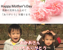 【メッセージ入りケーキ】ケーク・オ・シトロン(1,800円)