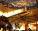 【テラスで樽生ビールとTボーンステーキ!】前菜4皿+ピッツァ2種+フィレンツェ風Tボーンステーキ! テラス席でビアガーデン気分を満喫「テラッツァ B」! ※フリードリンク2時間付き