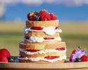【Anniversay&Birthday Cake】 NAKED(ネイキッド)